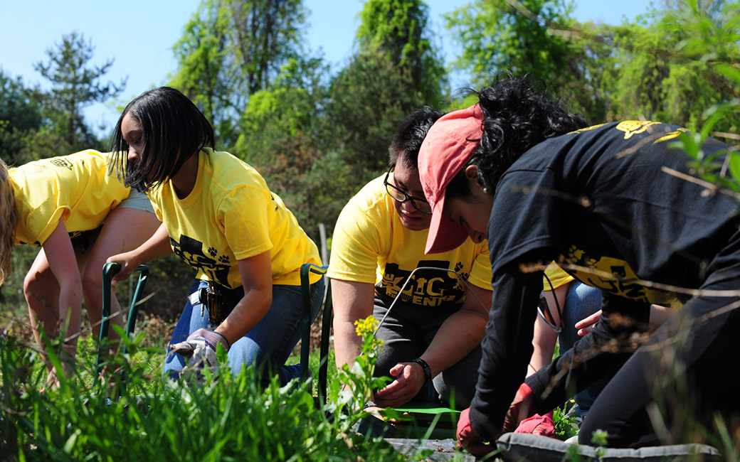 students work in community