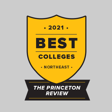 2020 Best Colleges Northeast: The Princeton Review