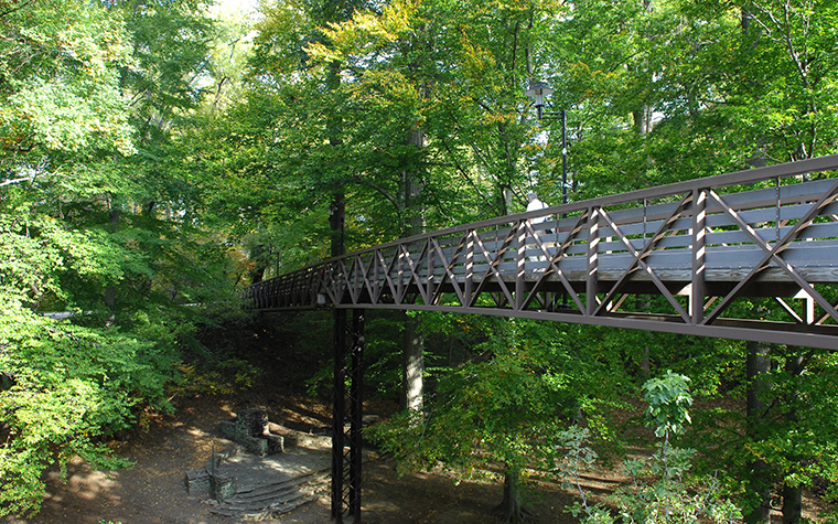The Bridge over the Glen Arboretum