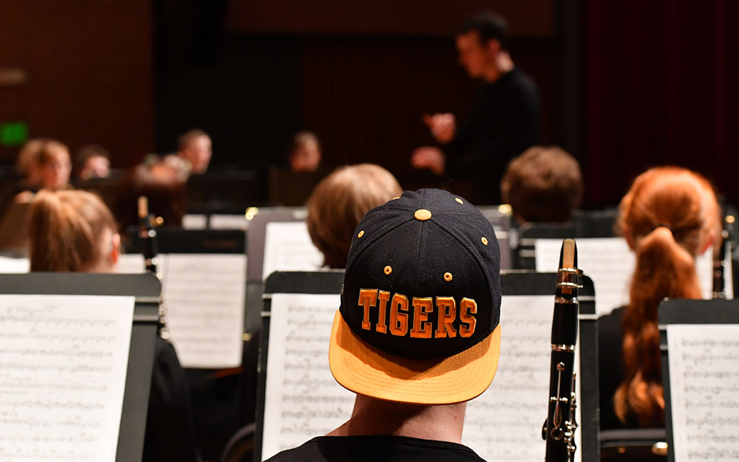 Orchestra Tiger Hat