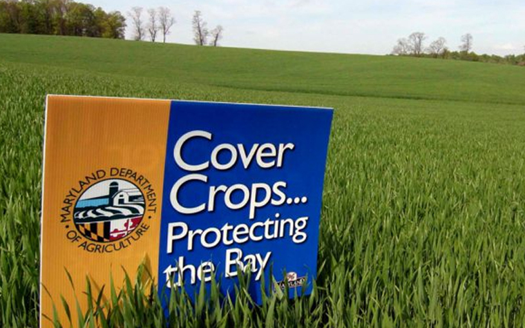 cover crop sign