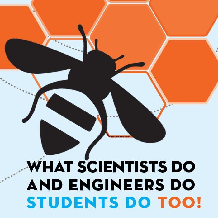 NGSS Bee Poster: What Scientists and Engineers Do, Students Do Too!