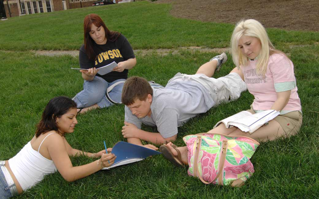 Four Honors students sitting in a grassy field and studying