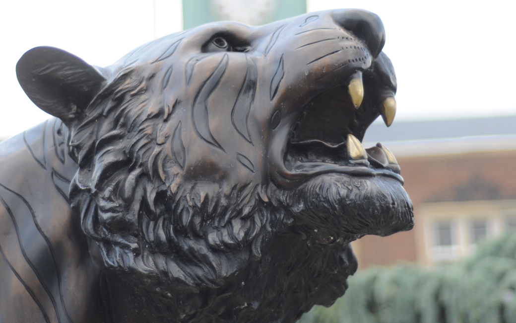 towson tiger in front of stephens hall