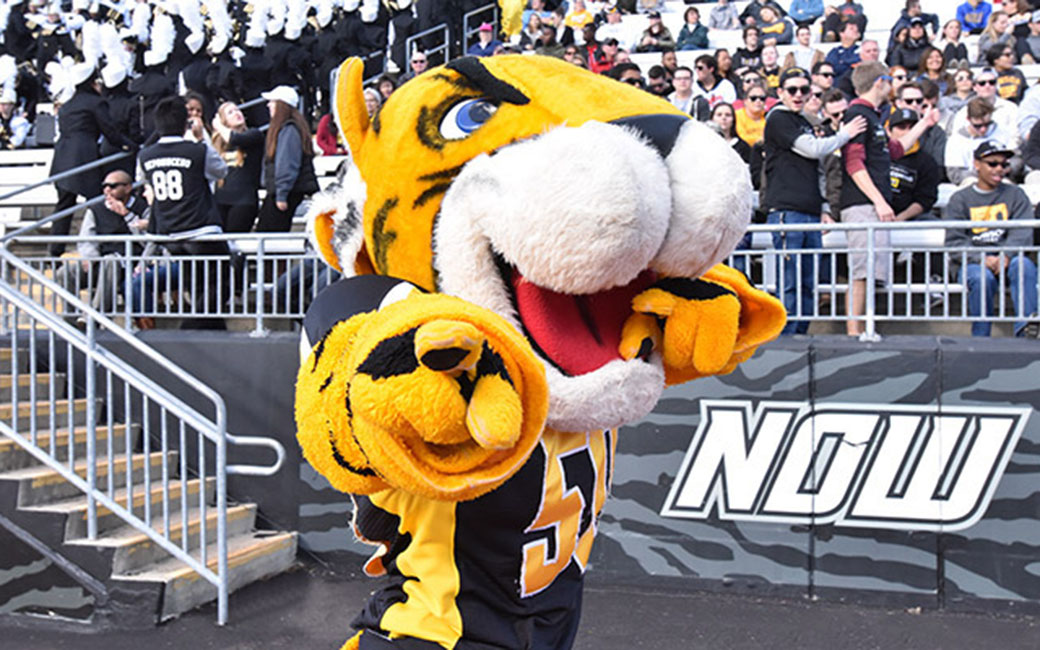 """Image result for towson tiger mascot"""""""