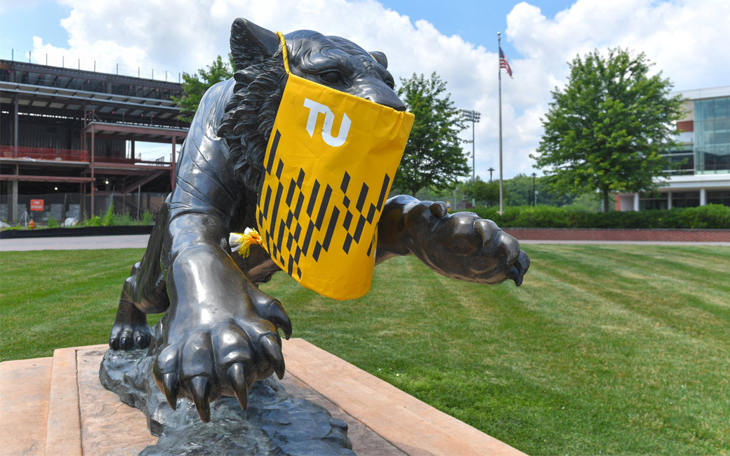 Towson Tiger with a mask